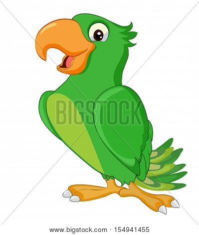Vector image of a green colored parrot.Illustration of parrot