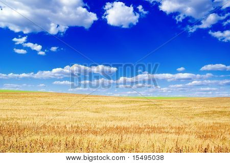 Autumn field, blue sky and clouds.