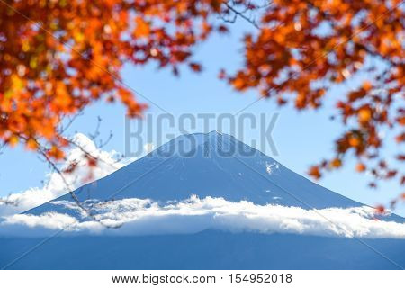 Fuji Mountain and blurred red maple leaves in Autumn season of Lake Kawaguchi Yamanashi Japan
