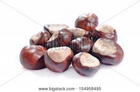 a bunch of brown  chestnuts nuts on white background