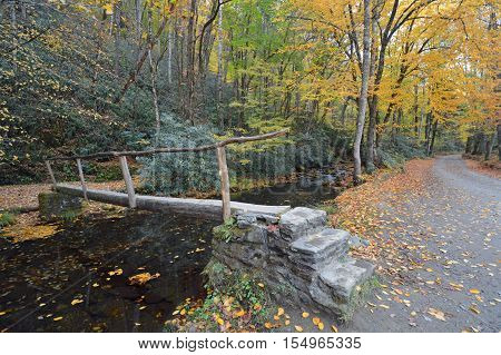Manmade bridge over a creek in the fall in North Carolina