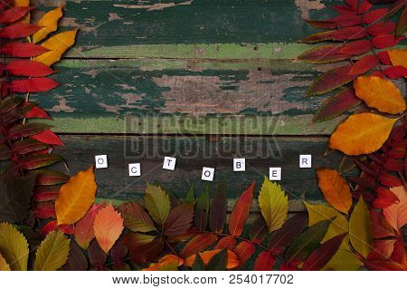 Autumn Maple Leaves Over Old Green Wooden Background With Copy Space And Text October