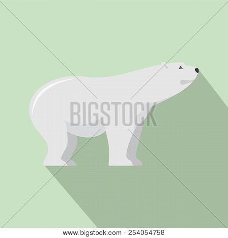 Watching Of Polar Bear Icon. Flat Illustration Of Watching Of Polar Bear Icon For Web Design