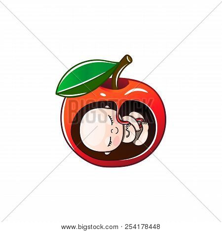 Apple And Forbidden Fruit, Pregnancy And Child. Vector Illustration