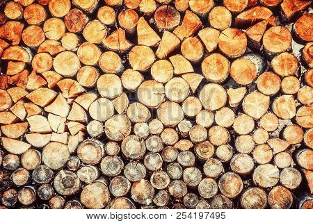 Background Of Wooden Logs. Year Rings. Wood Industry. Deforestation Theme. Woodpile Scene. Retro Pho