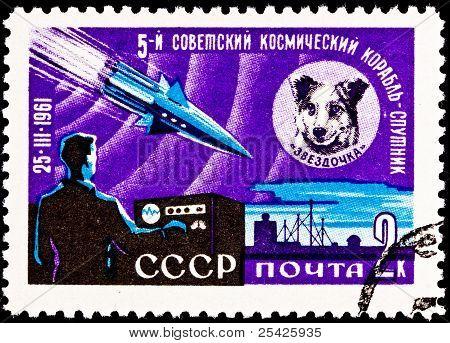 Space Dog Chernushka Sputnik 9 Rocket