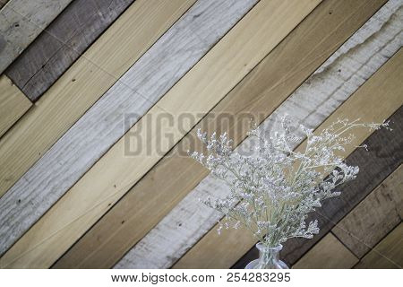 Dried Gypsophila Flower On Wooden Background, Stock Photo