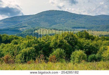 Lovely Countryside In Autumn. Forest Behind The Meadow And Mountain In The Distance