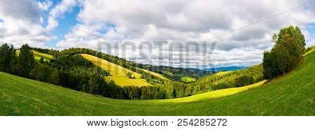 Panoramic Landscape In Mountain.  Forested Hills With Meadows On A Sunny Day. Cloudy Sky