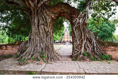 Tourist Behind The Old Gate With Banyan Root Called  Gate Of Time  At Wat Phra Ngam In Phra Nakhon S