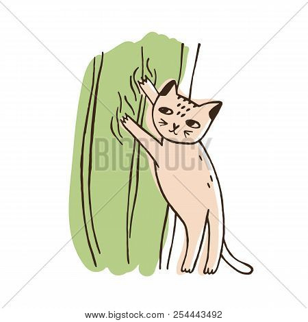 Nasty Cat Climbing On Curtains Isolated On White Background. Funny Naughty Kitty Tearing Off Home De