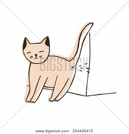 Bad Cat Urinating On Wall Isolated On White Background. Naughty Kitty Leaving Urine Marks At Home. P