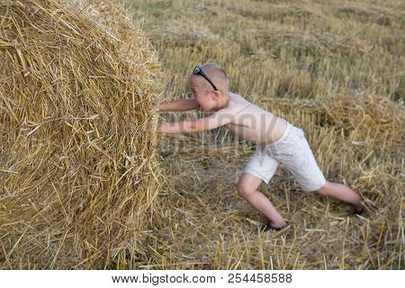 Boy Pushes Stack Of Hay, Little Boy Pushes Stack Of Hay