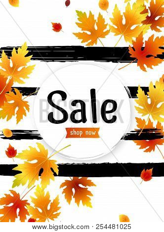 Autumn Sale Background Layout With Leaves For Shopping Sale, Promo Poster And Frame Leaflet, Web Ban