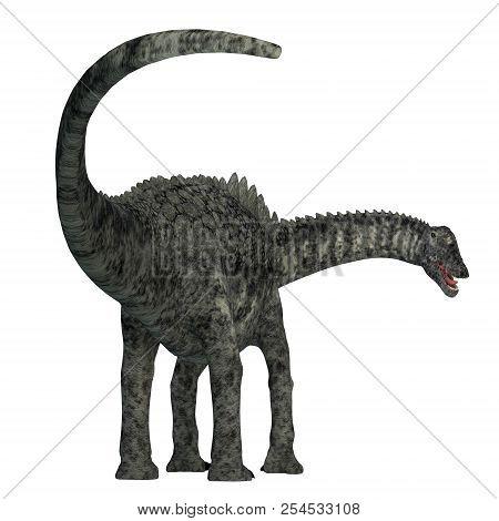 Ampelosaurus Dinosaur Tail 3d Illustration - Ampelosaurus Was A Herbivorous Sauropod Dinosaur That L