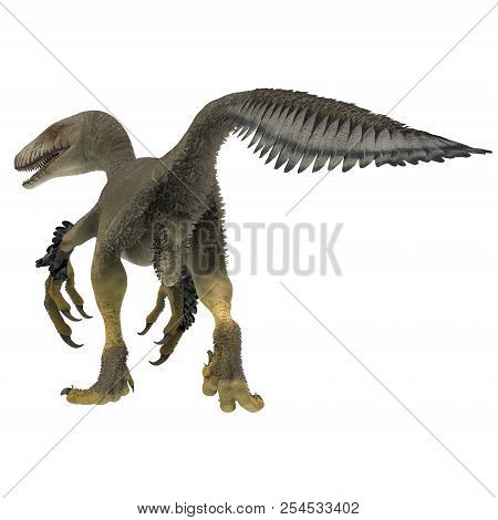 Dakotaraptor Dinosaur Tail 3d Illustration - Dakotaraptor Was A Carnivorous Dromaeosaurid Theropod D