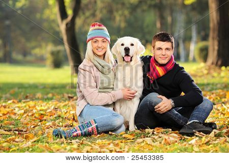 Smiling young man and woman hugging a labrador retreiver dog out in the park poster