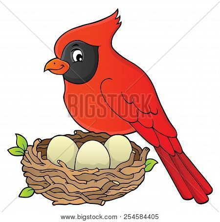 Bird Topic Image 8 - Eps10 Vector Picture Illustration.