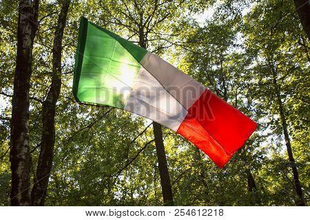 Italian Flag In The Woods