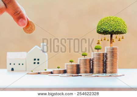 Businessman Hand Hold A Coin To Stack And Money Bag Of Tree With Grow And Home For Family In Office,