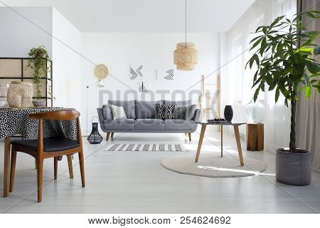 Table On Rug Next To Plant And Wooden Chair In White Flat Interior With Grey Couch And Lamp. Real Ph