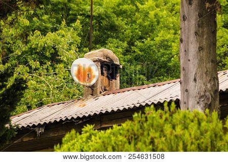 A Satellite Dish On A Roof Of House On The Background Of The Lush Foliage In Summer Day