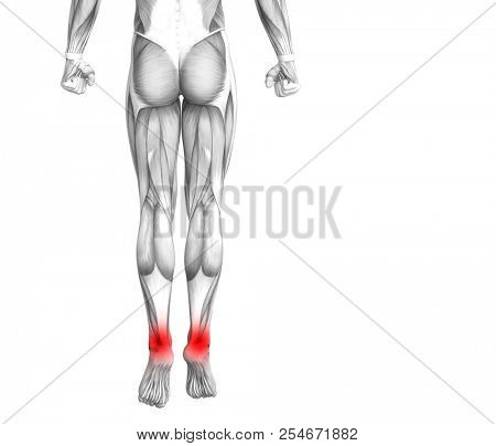 Conceptual ankle human anatomy with red hot spot inflammation or articular joint pain for leg health care therapy or sport muscle concepts. 3D illustration man arthritis or bone osteoporosis disease