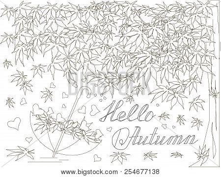 Maple Tree, Falling Maple Leaves Sketch, Umbrella Monochrome Romantic Background Lettering Hello Lov