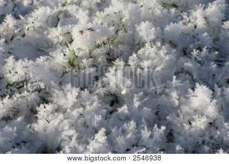 Small Ice Crystals On The Winter Meadow