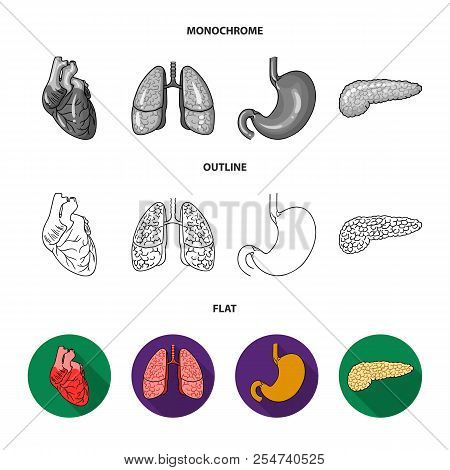 Heart, Lungs, Stomach, Pancreas. Human Organs Set Collection Icons In Flat, Outline, Monochrome Styl