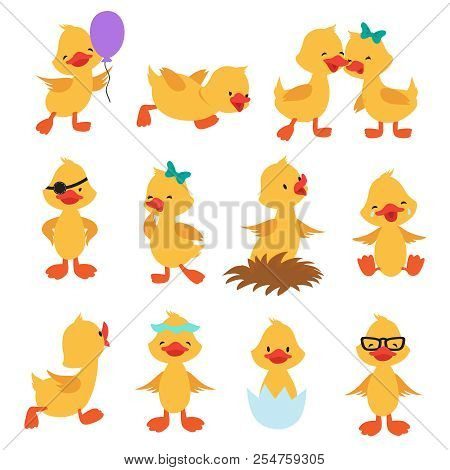 Cartoon Cute Ducks. Little Baby Yellow Chick Vector Isolated Characters. Bird Duckling, Funny And Ha
