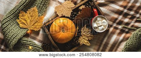 Autumn Still Life From Tray Full Of Pumpkin, Leaves, Cones, Scarf, Mug Of Cocoa, Coffee Or Hot Choco