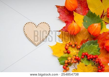 Autumn Thanksgiving Background With Wooden Heart.autumn Still Life. Colorful Maple Autumn Leaves, Ro
