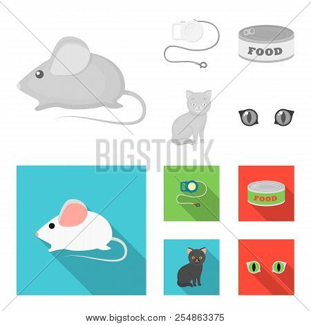 Mouse, Pet Leash, Pet Food, Kitten. Cat Set Collection Icons In Monochrome, Flat Style Vector Symbol