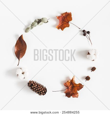 Autumn Composition. Wreath Made Of Eucalyptus Branches, Cotton Flowers, Dried Leaves On White Backgr