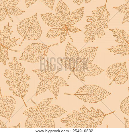 Vector Autumn Seamless Pattern With Oak, Poplar, Beech, Maple, Aspen And Horse Chestnut Leaves Orang