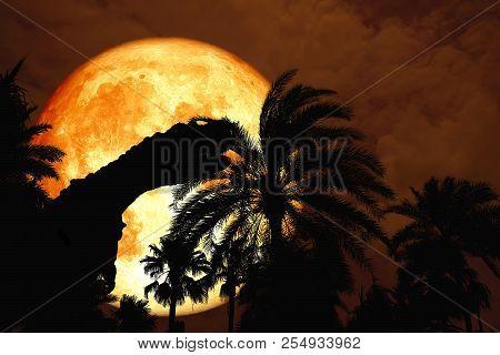 Full Blood Moon Back Silhouette Dinosaur In Park Orange Sky