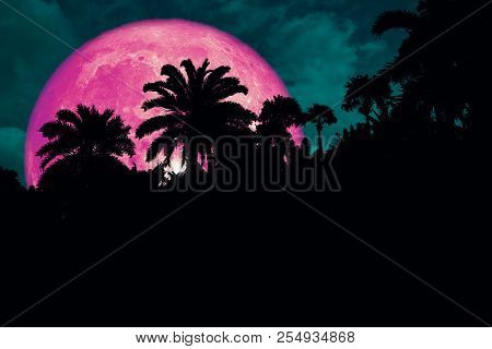 Super Pink Blood Moon Back Silhouette In The Ancient Palm Night Sky