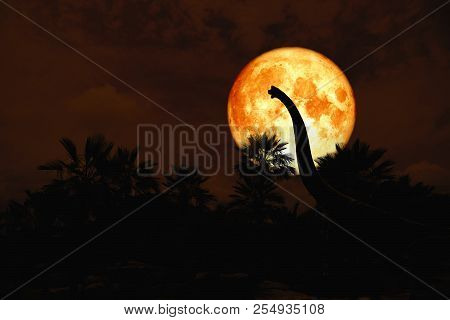 Blood Moon Back Silhouette Dinosaur In Ancient Park Red Night Sky
