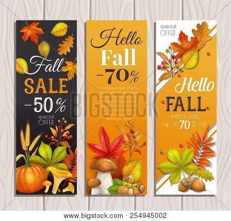 Seasonal Fall Sale Banners With Autumn Foliage Maple, Oak, Elm, Pumpkin, Chestnut, Leaves Rhus Typhi