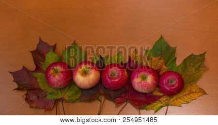 Border Of Colorful Maple Leaves And Apples On Wooden Background.
