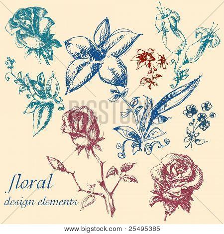 Floral design elements collection