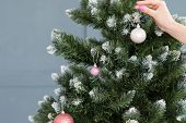christmas tree decoration. festive holiday traditions. hand hanging elegant ball embellishments to a green spruce. poster