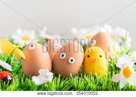 Happy Easter Eggs Among The Spring Grass With Flowers On An Isolated Gray Background, Easter Egg Hun