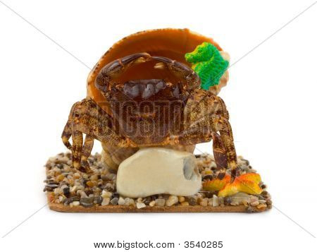 Souvenir crab and conch copy-space on stone isolated on white background poster