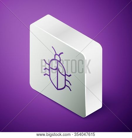 Isometric Line System Bug Concept Icon Isolated On Purple Background. Code Bug Concept. Bug In The S