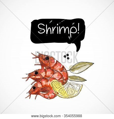Shrimp Seafood Taste For Packing Or Menu Watercolor Spray Seafood Poster On White Background