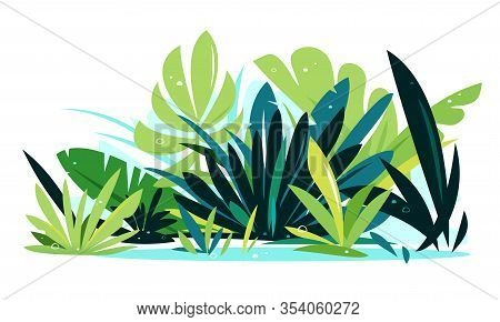 Decorative Composition Of Different Jungle Plants On Ground, Group Of Green Plants Isolated, Dense V