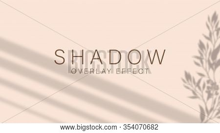 Shadow Overlay Effect. Transparent Soft Light And Shadows From Branches, Plant, Foliage And Leaves.