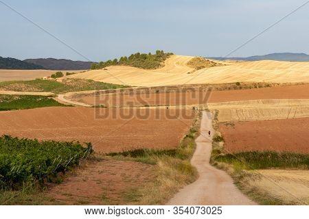 View Of Long Hiking Trail.  Camino De Santiago - Way Of St. James - Pilgrimage